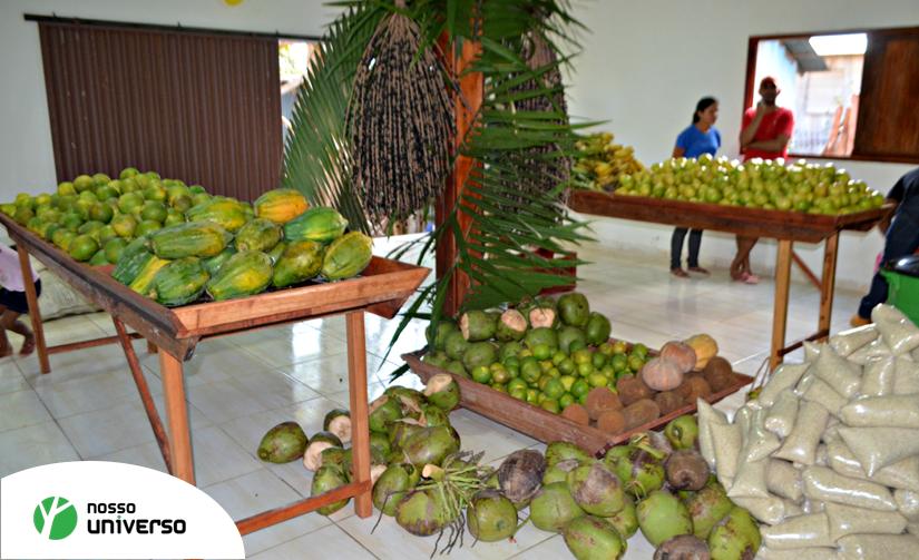 Em parceria com índios, fundação belga cria supermercado ecológico no Acre