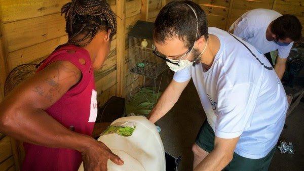 Estudante da PUC-Rio cria mochila que transforma água suja em potável